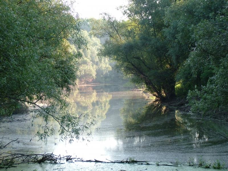 Balade uitate ale Dunării – Antofiţă al lui Vătaf Vioară