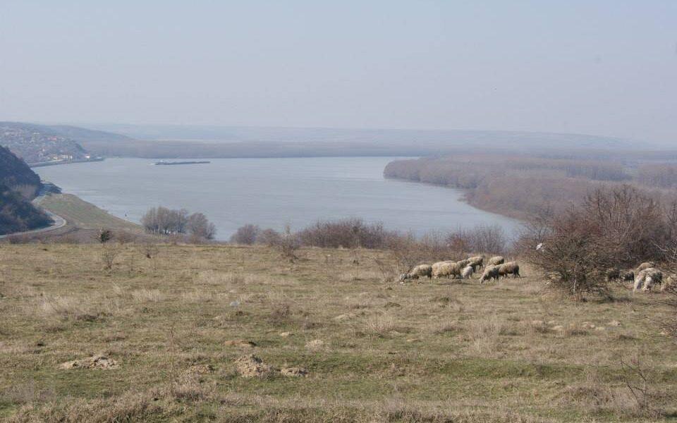 Dobrogea otomană  – Păstorii, ierbăritul şi beilicul