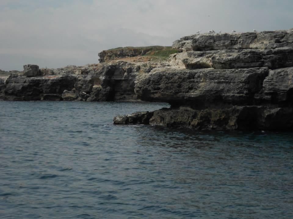 Tyulenovo, legenda şi misterul focilor din Marea Neagră