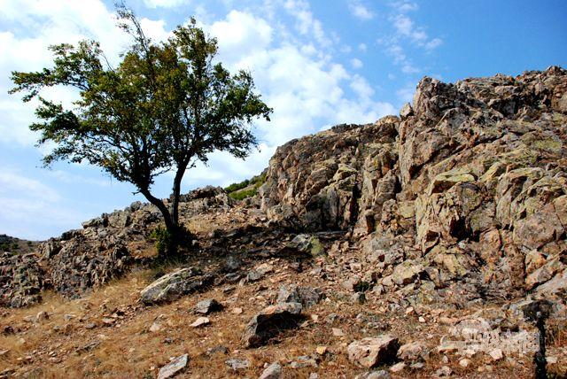 O legendă tulceană – Dealul Comisului, slujitorul lui Vodă