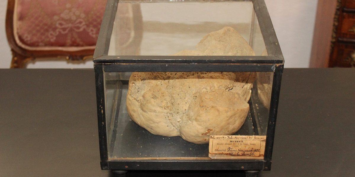 """Cea mai veche pâine din lume, """"Pâinea de la Genova"""", din 1892, expusă la Galați!"""